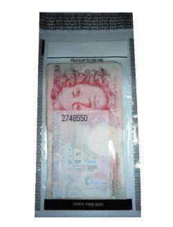 moneybag5